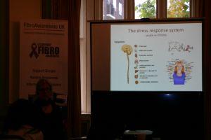 FibroAwareness UK Event 2015 - 14 Of 48